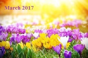 Practice Newsletter – March 2017