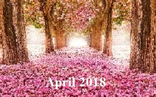 Practice Newsletter – April 2018