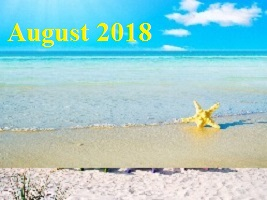 Practice Newsletter – August 2018