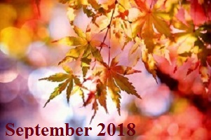 Practice Newsletter – September 2018