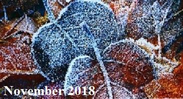 Practice Newsletter – November 2018