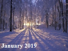Practice Newsletter – January 2019