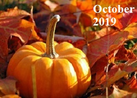 Practice Newsletter – October 2019